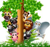 Funny animal wildlife cartoon collection Stock Image