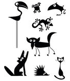 Funny Animals Collection royalty free stock photos