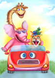 Funny animals drive the red car. Giraffe, cat, elephant Royalty Free Stock Image