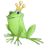 Funny animals frog prince. Funny prince frog animal with a crown Royalty Free Stock Photo