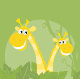 Funny animals - jungle giraffe family stock images