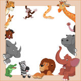 Funny animals. Vector illustration set of funny exotic animals in frame Stock Images