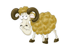 Funny aries Stock Images