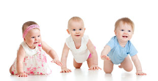 Funny Babies Go Down On All Fours Stock Photography