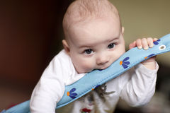 Funny baby Royalty Free Stock Image