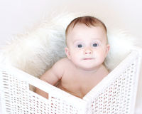 Funny baby age of 5 months in white basket stock photos