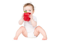 Funny baby biting on a big red paprika Stock Images