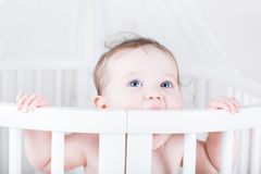 Funny baby biting on a crib Royalty Free Stock Image