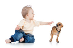 Funny baby boy and dog on white background Stock Photo