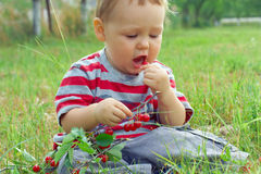 Funny baby boy eating fresh ripe cherry. Cute baby boy eating fresh ripe cherry while sitting on the grass Royalty Free Stock Images