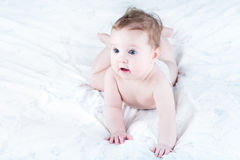 Funny baby in a diaper learning to crawl Royalty Free Stock Photography