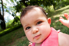 Funny baby face with big cheeks Stock Photography