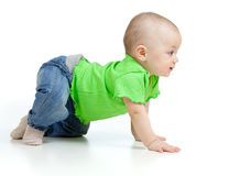 Funny baby goes down on all fours. Little child goes down on all fours Stock Photography
