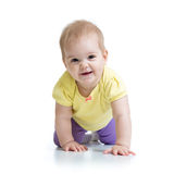 Funny baby goes down on all fours Royalty Free Stock Image