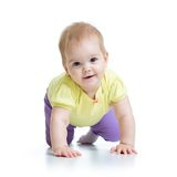 Funny baby goes down on all fours Royalty Free Stock Images