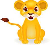 Funny baby lion Royalty Free Stock Photos