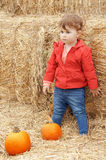 Funny baby with pumpkins halloween Stock Photos