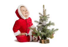Funny baby in Santa Claus clothes with xmas tree Stock Photos