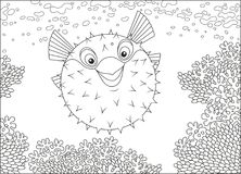 Fish-hedgehog on a reef. A funny balloonfish swimming over amazing corals in a tropical sea, a black and white vector illustration in cartoon style for a stock illustration