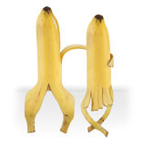 Funny bananas. Two funny Sitting bananas on white Royalty Free Stock Photo