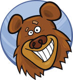 Funny bear Royalty Free Stock Photos