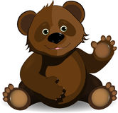 Funny bear Stock Images