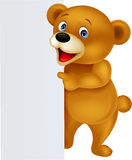 Funny bear with blank sign Royalty Free Stock Photos