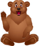 Funny Bear cartoon Royalty Free Stock Image