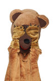 Funny bear costume Stock Images