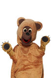 Funny bear costume Stock Photos