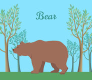 Funny Bear Illustration Royalty Free Stock Images