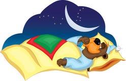 Funny bear. Sleeps and sucks his thumb Royalty Free Stock Photo