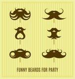 Funny beard Royalty Free Stock Photography