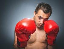 Funny beaten boxer Stock Photos