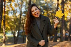 Funny beautiful happy young woman in fashionable coat shows tongue and holding autumn yellow leaf in the park. Cheerful emotion. Funny beautiful happy young stock photos
