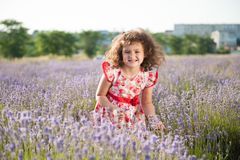 Funny beautiful little girl with clenched teeth bouquet of flowers in field stock image