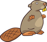 Funny beaver. Cartoon illustration of funny beaver Stock Photography