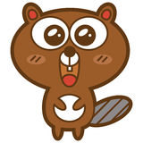 Funny beaver. Stock Image