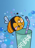 The funny bee. A fat bee get drunk near a glass Stock Photos