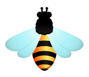 Funny bee on white background Royalty Free Stock Images
