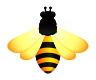 funny bee on white background Royalty Free Stock Photography