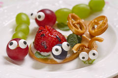 Funny beetles from grapes and berries Stock Photos