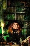 Funny beldam. Attractive witch in the wizarding lair. Fairytales. Halloween Stock Photography