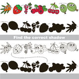 Funny berries set. Find correct shadow. Funny berries set with shadows to find the correct one. Compare and connect objects and their true shadows. Easy Royalty Free Stock Photo