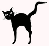 Funny big-eyed black cat with raised downy tail Stock Photography