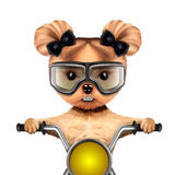 Funny biker dog sitting on a chopper. Stock Photography