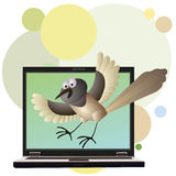 Funny bird and notebook Stock Images