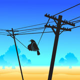 Funny bird on the poles. Illustration Royalty Free Stock Image