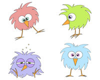 Funny birds. Set of four cartoon birds for your designs Stock Images