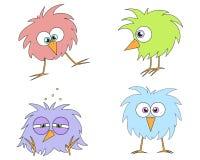 Funny birds. Set of four cartoon birds for your designs Stock Images